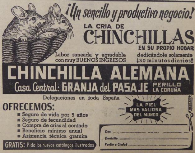 1970-04-05- La Voz de Galicia- Anuncio de Chinchillas